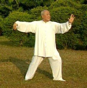Estilo Yang Taichi Taiji único Sword & Tai Chi Broadsword-Yang Zhenduo Dvd    eBay